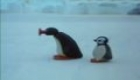 042 Pingu at the Fairground