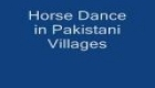 HORSE DANCE PAKISTAN