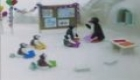 Pingu at the Nursery