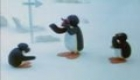 Pingu on the School Excursion