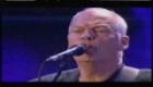 Pink Floyd - Wish You Were Here - Live 8