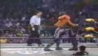 Sting vs Hollywood Hogan (Title match)2of 3