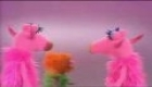 The Muppets - Manah Manah
