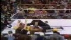 undertaker vs. hulk hogan 2