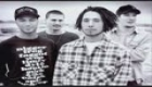 Rage Against The Machine- Ashes In The Fall