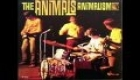 The Animals - All Night Long