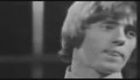 THE WHO-PICTURES OF LILY